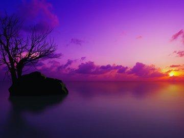 android安卓紫色风景手机壁纸大全,android安卓紫色 .