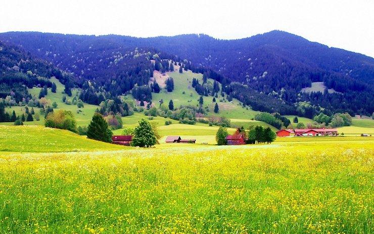 安卓风景 风光 美景 大自然 旅游手机壁纸