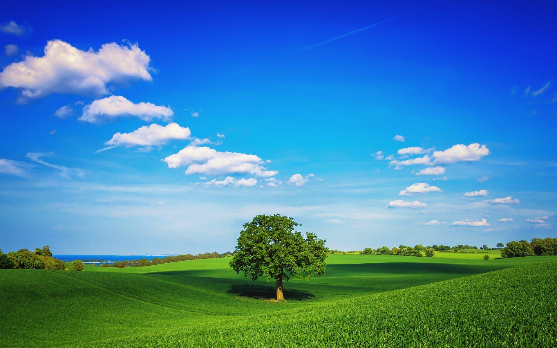 高清唯美风景桌面壁纸-风景桌面壁纸高清全屏_电脑桌面风景壁纸高清