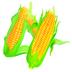 玉米价格 安卓最新官方正版