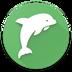 海豚背单词