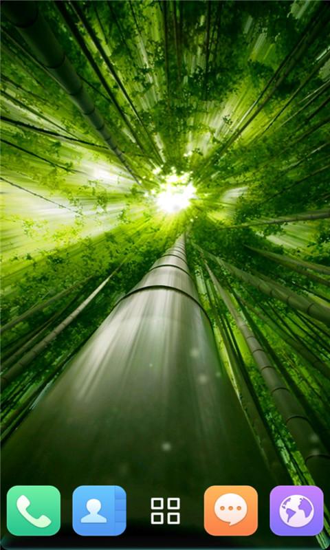 荧光竹林-动态壁纸