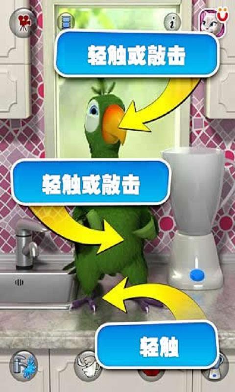 会说话的鹦鹉截图3