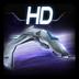 帝国之战HD 1.6安卓游戏下载