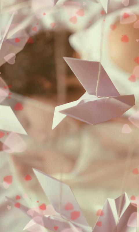 可爱折纸-绿豆动态壁纸