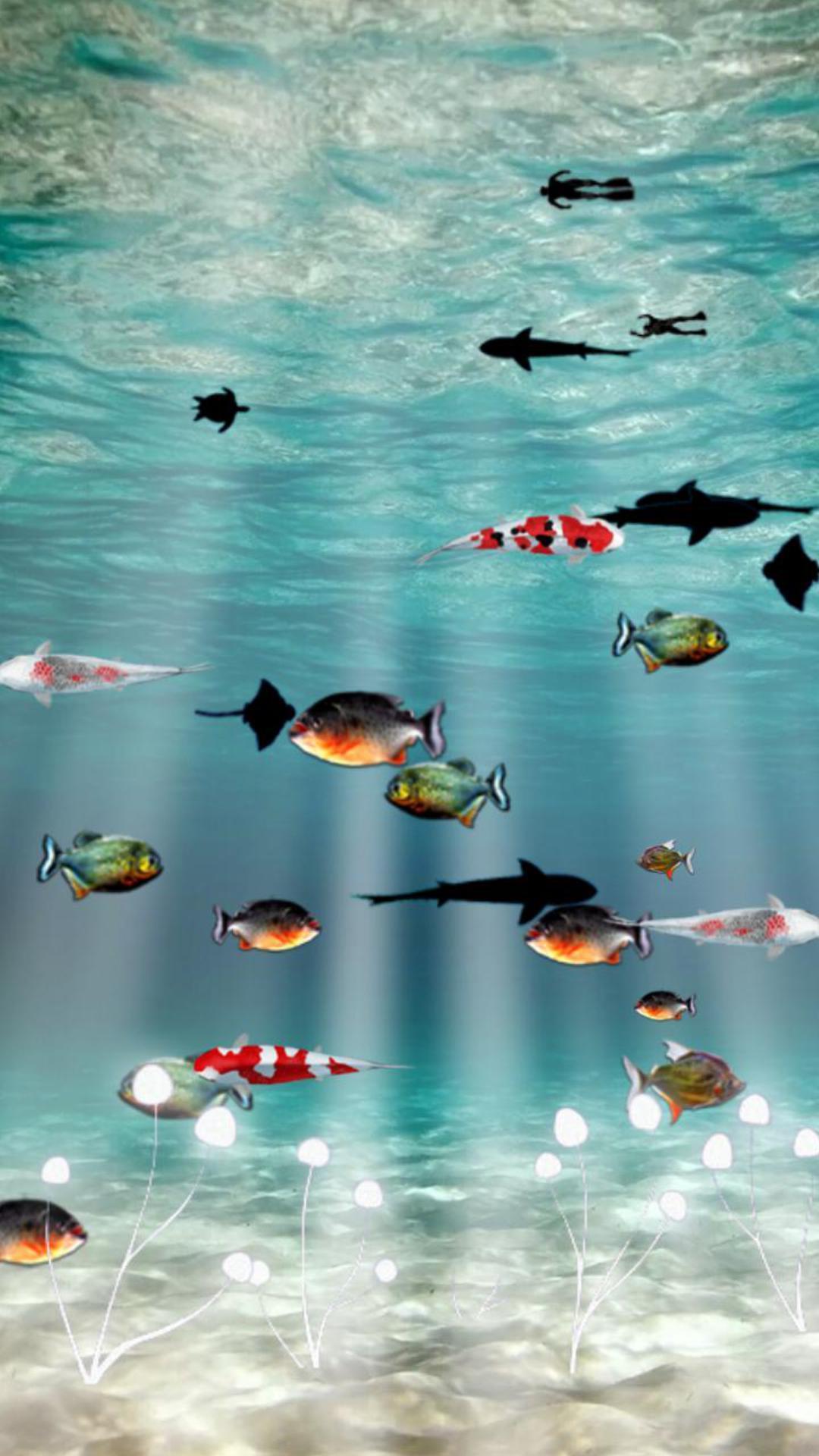 海底世界主题动态壁纸3.3安卓客户端下载_mdpda手机网