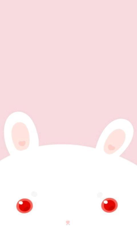 可爱小动物-绿豆动态壁纸